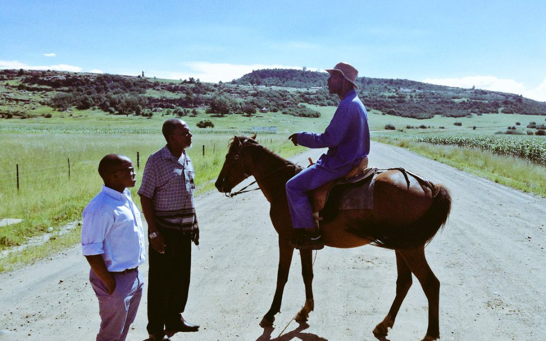The Rise of Eastern Cape Black Farmers