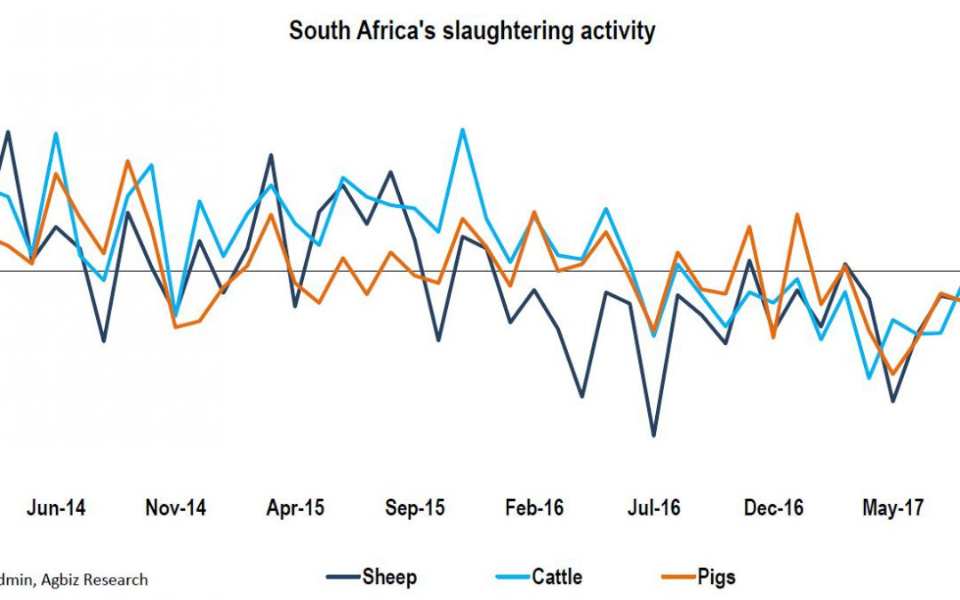 Daily Chart: The decline in South Africa's cattle, sheep and pig slaughtering activity