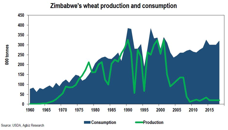 Zimbabwe's Growing Appetite for Wheat