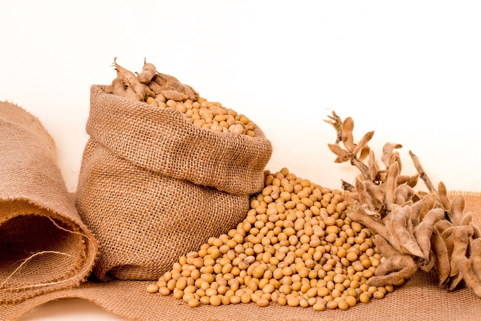 China, Soybeans and Ethiopia