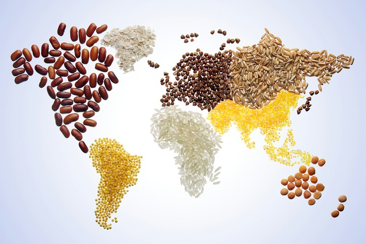 Higher prices for grains, dairy and vegetable oils a global occurrence