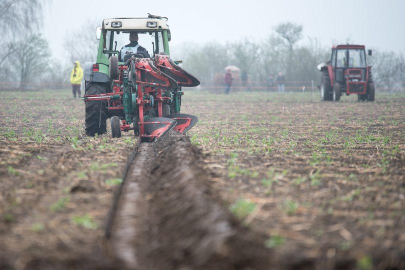 La Niña rains kick off South Africa's 2020/21 summer crop season