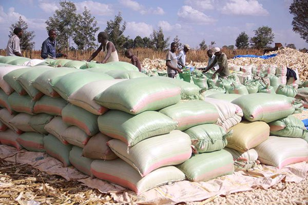 Kenyans can celebrate food price relief, but they are not out of the woods