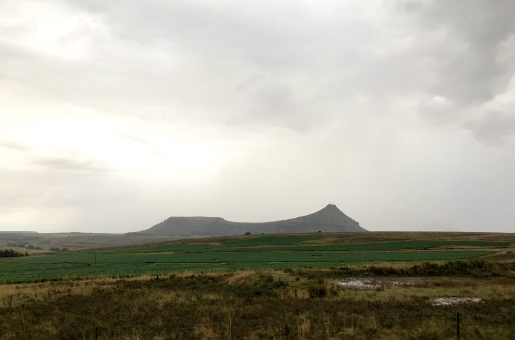 Rainfall across South Africa gets summer crops off to a good start