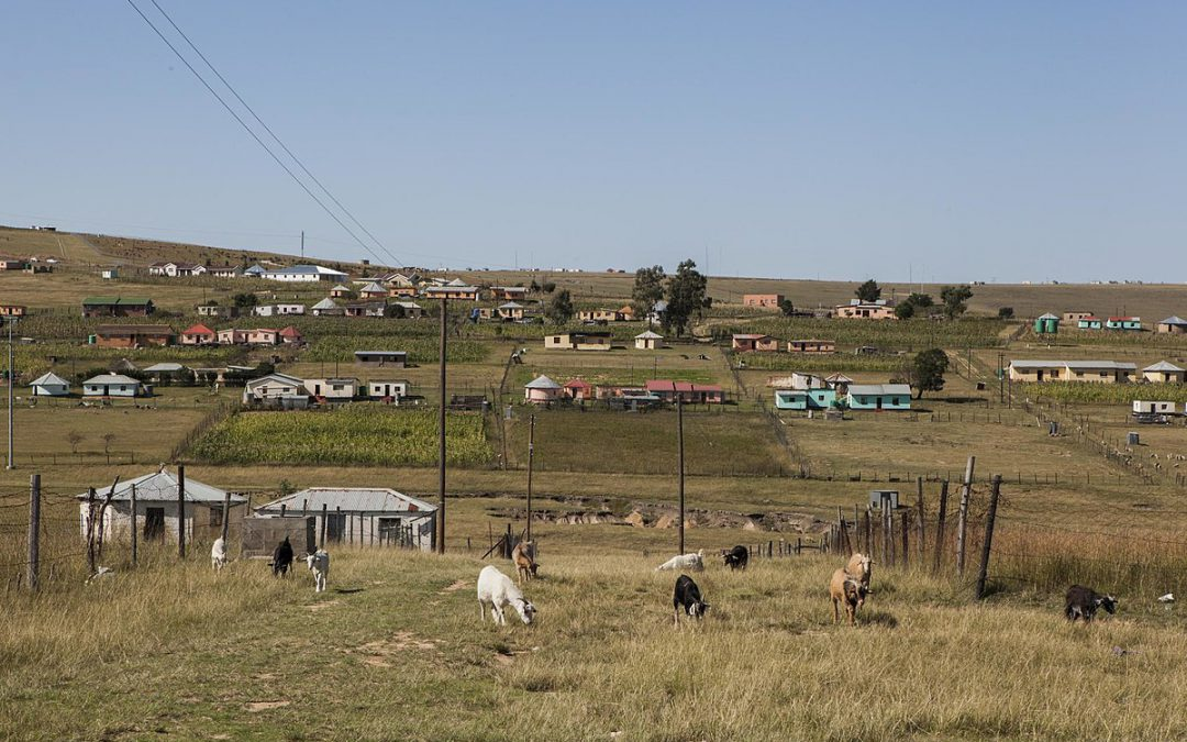 Growing competition for land between agriculture and human settlement in rural South Africa