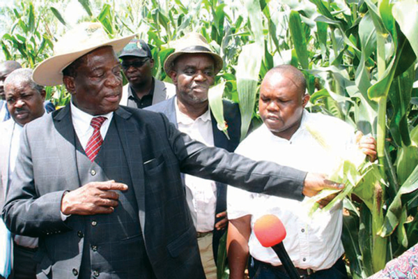 Zimbabwe seems serious about land reform compensation process