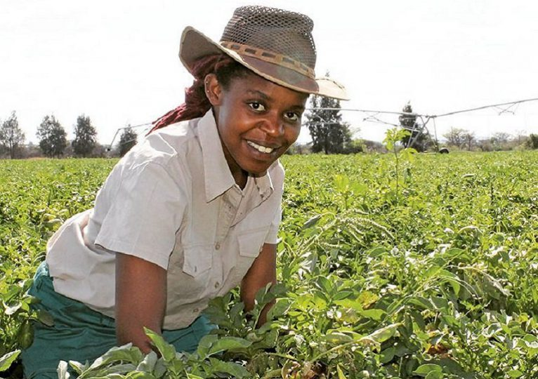 Women's work on African farms