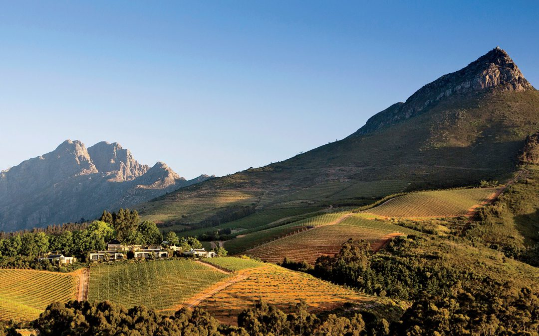 Agriculture can help revive South Africa's small rural towns