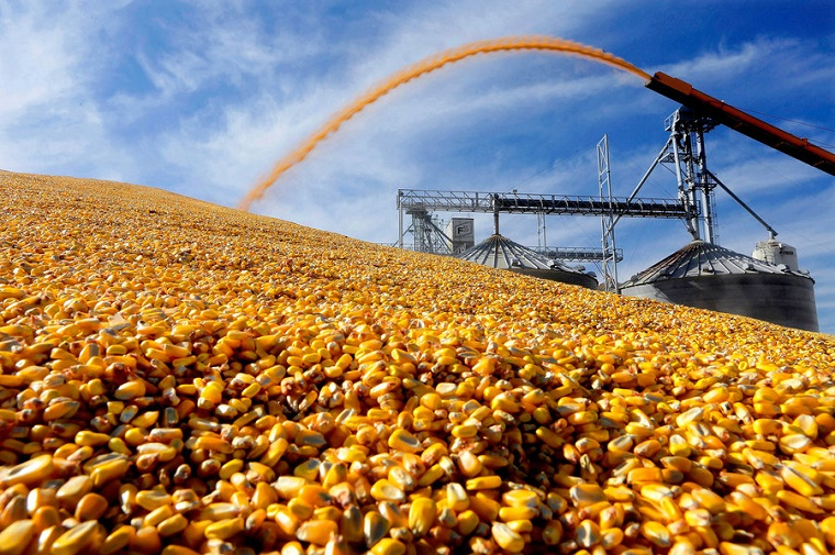 Thoughts on the U.S. maize market
