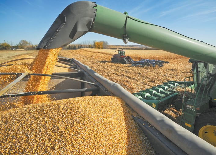 Zimbabwe imports the largest weekly maize volume from SA in 7-years