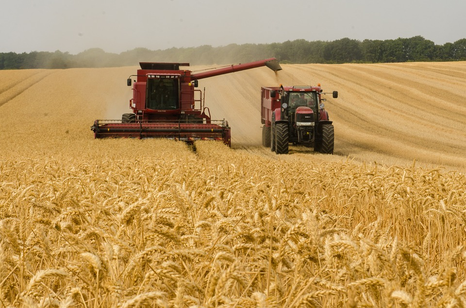 Some positive developments in the global wheat market