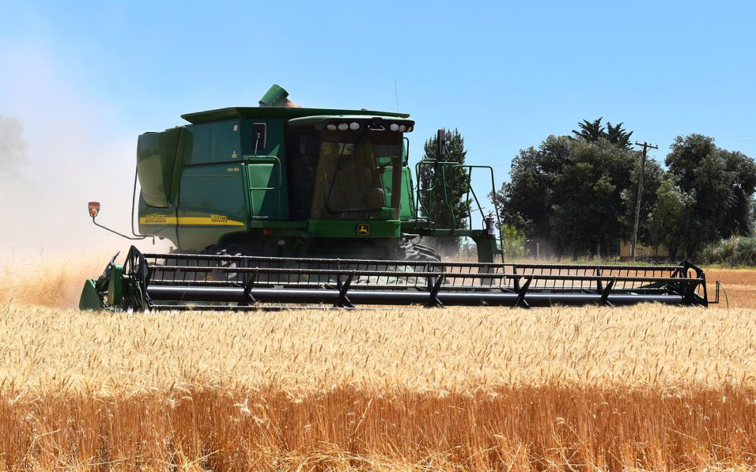 South Africa's 2020/21 winter crop production forecasts revised up