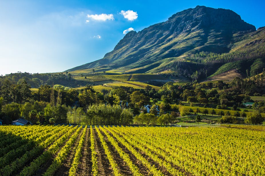 South Africa's agriculture and land reform: How far are we from an integrated and inclusive rural economy?
