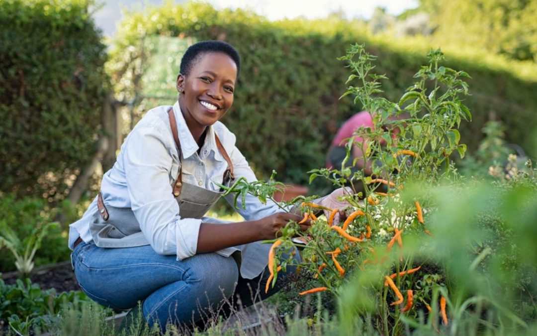 South Africa's land policy seeks to boost women in redistribution delivery